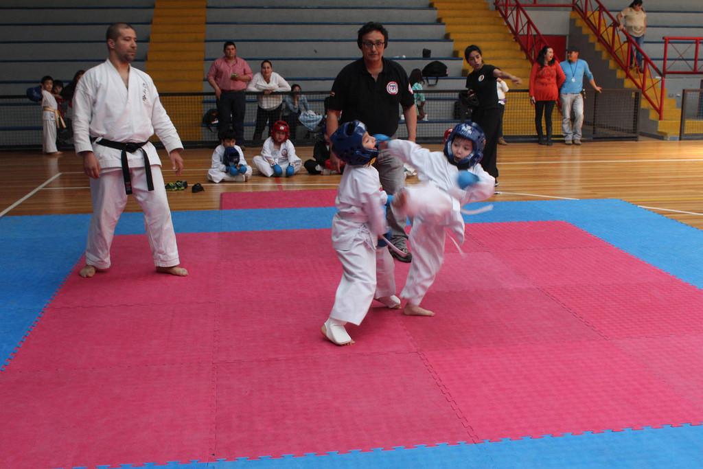 Más de 100 deportistas dieron vida a Torneo Abierto de Artes Marciales