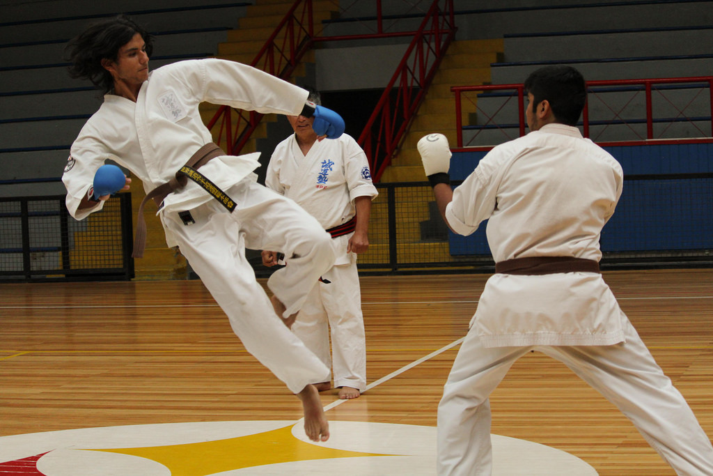 Karate Do cerró temporada 2015 con Campeonato Interno