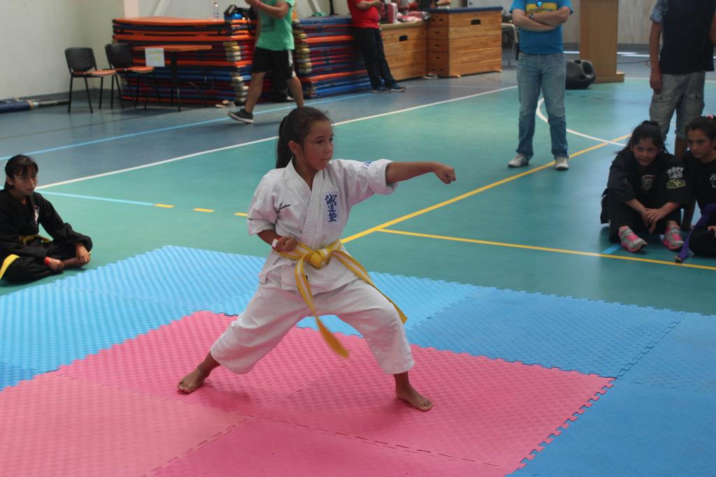 Karate acerero dijo presente en Torneo Internacional de Artes Marciales Inter Estilos