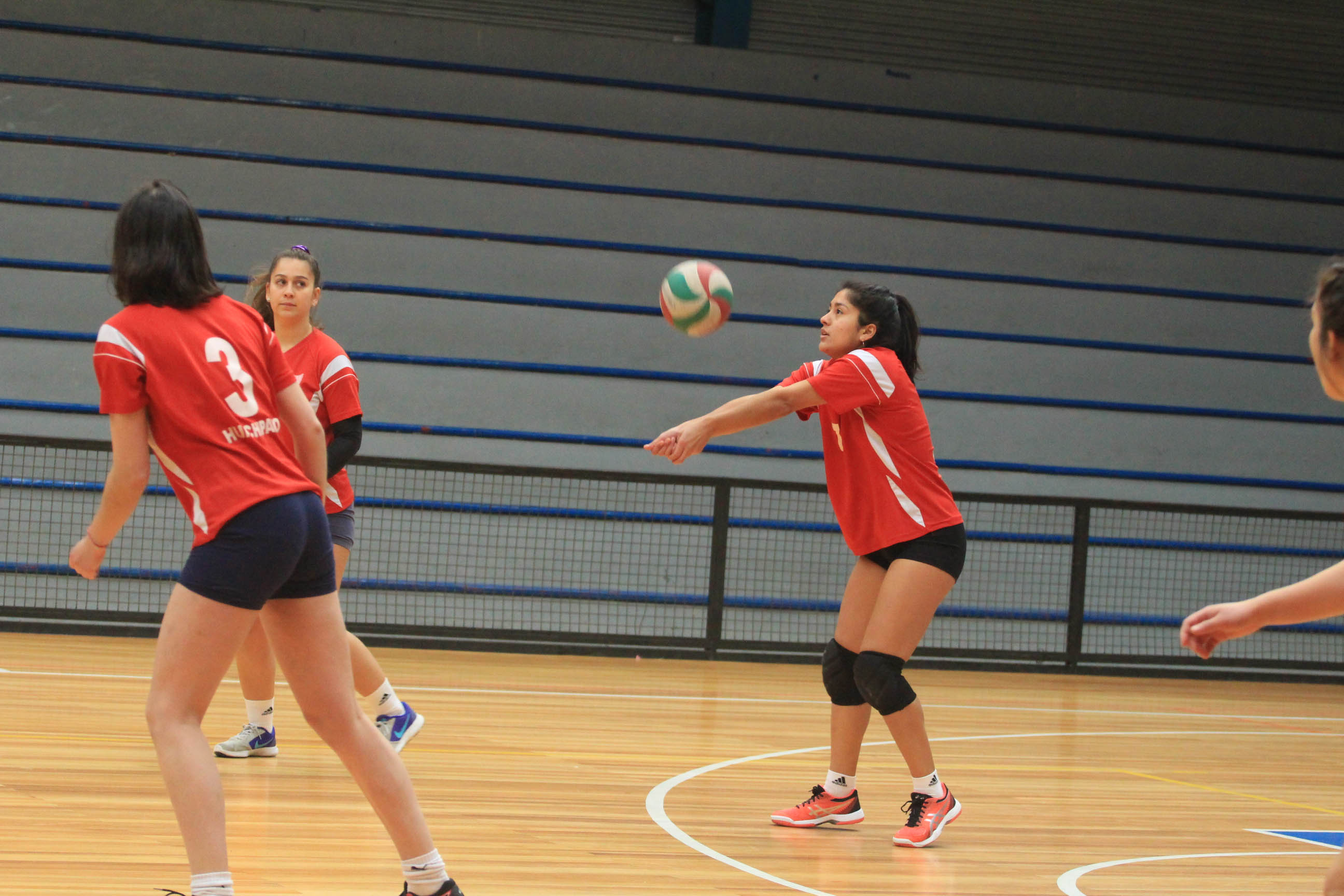 Equipo femenino de voleibol sólo conoce de victorias en Liga Sur