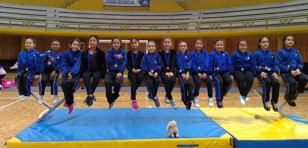Gimnasia Artística acerera tuvo un gran desempeño en torneo local