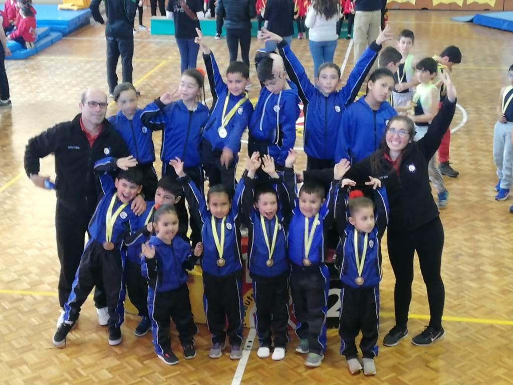 La Gimnasia Artística se lució en torneos realizados en la región
